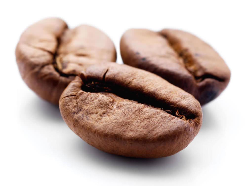 Excellentas Kaffeebohnen / exzellenter Kaffee / Specialty Coffee / Spezialitätenkaffe