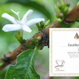 Excellentas - bester Kaffee und Gewinner bei Cup of Excellence