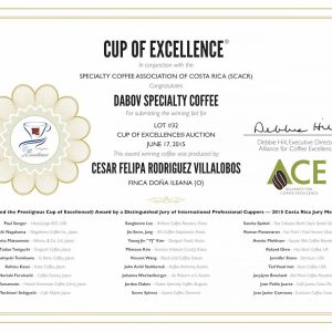 Exzellenter BIO-Kaffee ILEANA exclusive edition Cup of Excellence Gewinner 2015 Costa Rica