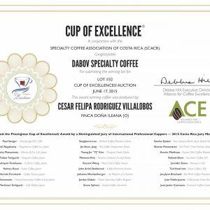 Exzellenter BIO-Kaffee ILEANA exclusive edition Cup of Excellence Gewinner 2015 Costa Rica