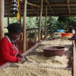 Farmer Andre Mayorwa, COCAGI/Rwashoscco Cup of Excellence Gewinner 2015 Ruanda