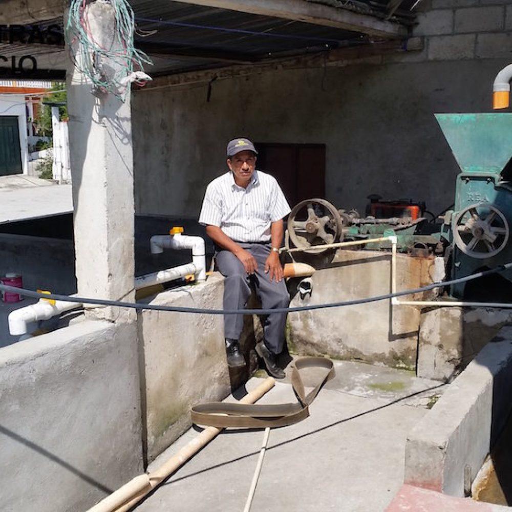 Kaffeefarm La Esperanza de Méndez / Farmer Rogelio Saúl Méndez Juárez